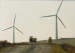 Wind Turbines, Powys, Wales